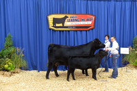 2015 NJAS Owned Cow-Calf Pair Backdrops