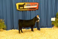 2015 NJAS Owned Heifer Backdrops #1 Friday