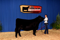 2015 NJAS Owned Heifer Backdrops #2 Saturday