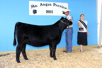 2015 Missouri Angus Preview Show