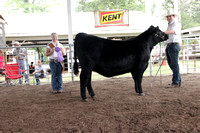 2015 Southern Illinois Junior Show