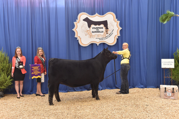 Champion Intermediate Heifer
