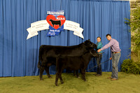 2014 NJAS | Owned Cow-Calf Pairs Backdrop