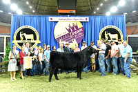 Owned 3rd Overall Heifer, Class 32 2nd place, entry 1316 exhibited by Chance Myers_APP_3586