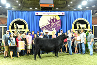 Owned 4th Overall Heifer, Division 14 Late Senior, Class 55, entry 1727 exhibited by Bryann Bullerman_APP_3625