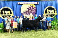 Owned 5th Overall Heifer, Divison 8 Jr Heifer 2, Class 27, entry 1241 exhibited by Sara Sullivan_APP_3674