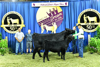 Owned Cow Calf Pair Backdrops
