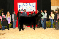 MB197462_Ch_Angus_Steer_Ch_Junior_Yearling_Megan_Pelan