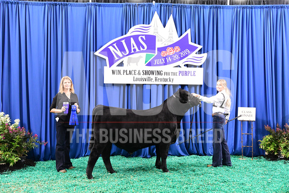 2019 NJAS_Bred & Owned Bull_1st Class 1_exhibited by Sydney Pearl Johnson_APG_5067