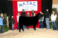 MB208360_Grand_Ch_Bred_And_Owned_Heifer_Ch_Junior_Yearling_Christopher_Shelton