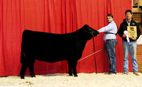 2015 Alabama Junior Beef Expo