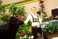Intermediate Showmanship Candids