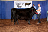 2015 North Carolina Junior Beef Roundup