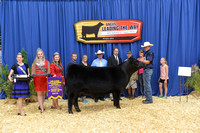 2015 NJAS | Bred-and-Owned Heifers