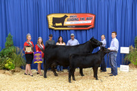 Owned Cow Calf Pair Class Winners