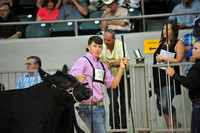 2015 NJAS Owned Cow-Calf Pair Candids #1
