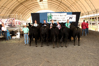 2015 Northwest Regional Preview Junior Show