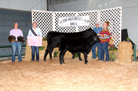 2015 West Virginia Breeders' Show