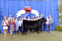 2014 NJAS | Owned Heifer Champions