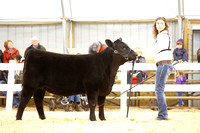 Showmanship Candids-photos
