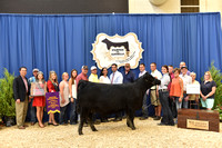 2016 NJAS | Bred-and-Owned Heifers