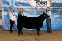 2016 Iowa Beef Expo Show & Sale