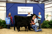 2016 Virginia Angus Breeders' Open & Junior Shows