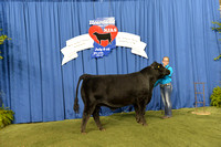 2014 NJAS | Steer Backdrops