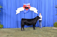 2014 NJAS | Owned Heifer Class Winners