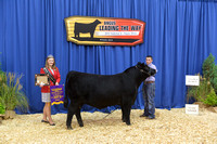 2015 NJAS | Bred-and-Owned Bulls Champions