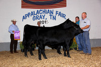 2015 Appalachian Fair