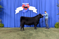 2014 NJAS | Owned Heifers Saturday