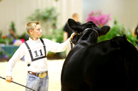 Junior A Showmanship